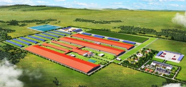 Арх. Проект фермы (10 000 коров)
